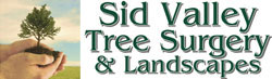 Sid Valley Tree Surgery – Devon