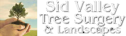 Sid Valley Tree Surgery - White logo -tree services - garden landscaping Sidmouth Devon